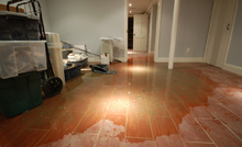 Safety Hazards and Health Risks from Indoor Flood